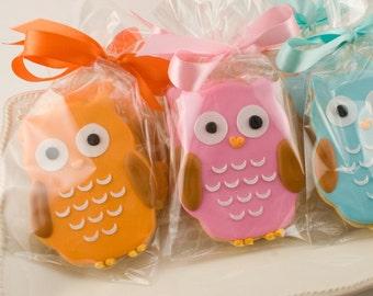 Owl Cookies - 24 Decorated Sugar Cookie Favors