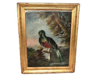 19th Century Oil Painting Birds Antique Folk Art in Gilt Frame