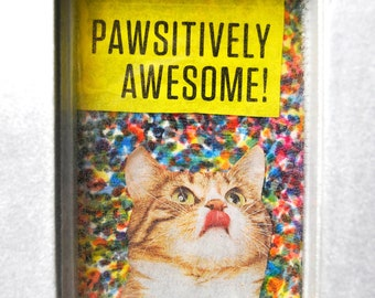 "Homemade ""Pawsitively Awesome"" Wall Hanger"