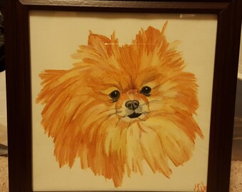 Watercolor Pencil Pomeranian Painting or Print