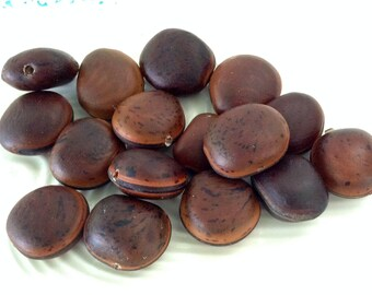 Sea Bean Beads -  Ojo de Buey - brown hamburger beads - drilled Mucuna seeds - Ox Eye Seeds - brown seeds - Natural - Surf tumbled - Hawaii