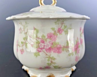 HAVILAND & CO Limoges Dresser Box Cherry Blossom Decoration For E H Murray NY