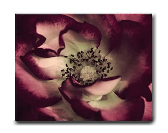 Flower artwork canvas wall art burgundy and mint wall art, dark red rose canvas modern art canvas gallery wrap, living room wall art bedroom