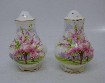 Royal Albert Blossom Time Salt & Pepper Shakers