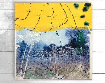Original acrylic and photographic transfer, wall art - Winter Grasses by Suzielou