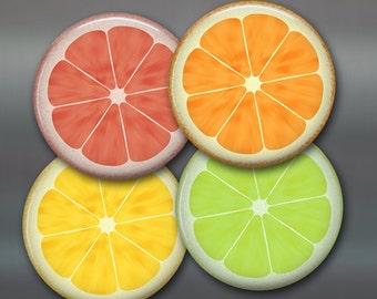 food magnet set - citrus fruit art print - citrus kitchen art print - housewarming gift for foodie