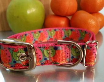 "1"" Metal Buckle Dog Collar, Tutti Frutti Fruit Print Ribbon Dog Collar, Plastic Buckle, Nylon Webbing"