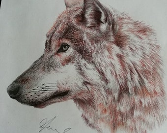 Wolf in pastel - framed