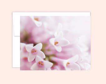 Stationery Set (10 cards), Hostess Gift, Wedding Card, Thank You, Cute Note Card, Greeting Card, Blank Inside, Flower Card, Pink Flowers