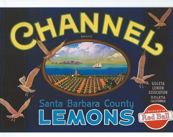 Lemon Fruit Crate Label, Channel from Santa Barbara Vintage Reproduction to Frame or for Paper Arts & Collage PSS 3229