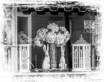 Still Life Store Window Display Hydrangea and Hare Black and White Cottage Chic Fine Art Photography Print or Gallery Canvas Wrap Giclee