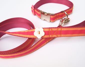 Preppy Pink stripe dog collar and leash set
