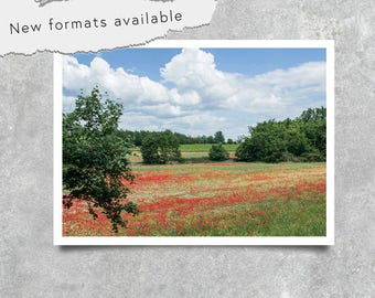 poster photography field of poppies poster printable decoration instant download A1 A2 A3 A4 A5 20 X 16 24 X 18 36 X 24 70 X 50 90 X 60