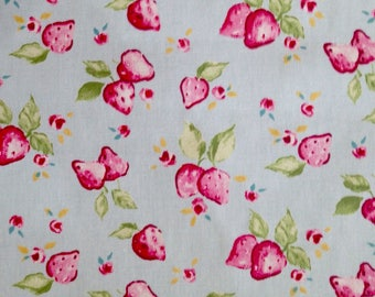 Strawberry Fabric from Clarke and Clarke