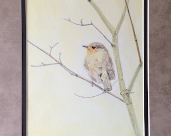 Original colored pencil drawing bird perched in tree