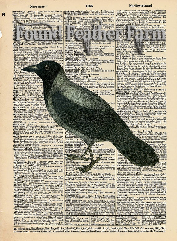 "Vintage Antique Dictionary Page with Antique Print ""Black Crow"""