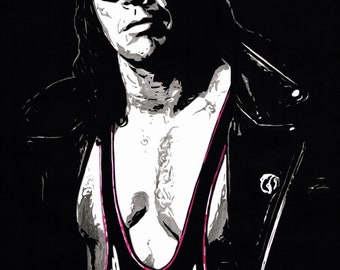 Bret Hart - Wrestling With Shadows