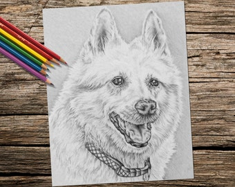 Adult Coloring Page, Coloring Pages, Instant download coloring, Shep Dog, coloring page, adult coloring, coloring for adults, Printable