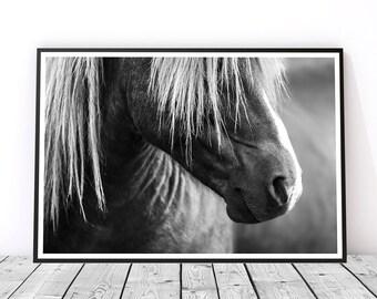 Horse Wall Art, Icelandic Horse Art, Black and White Print, Horse Print, Horse Decor, Horse Photography, Horse Lover Gift, Horse Art Print