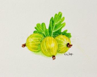 Very berry gooseberry, indian gooseberry, original watercolor painting 5x7, ready to frame