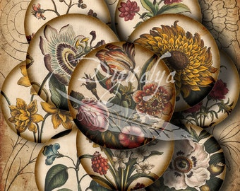 ANTIQUE FLOWER SKETCHES - Digital Collage Sheet - 30 Circles 1.5 inch or smaller available for pendant, magnet - See Promo Offer