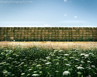 Hay Field Photo, Nature Photography, Hay Bales, Farmhouse Decor, Queen Ann's Lace Photo, Country Decor, Landscape Photography, Farm Field