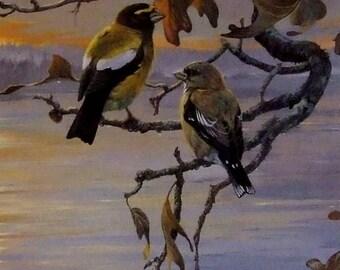 After the rain Mario Fernandez artist limited edition print 1988 Birds outdoor art wife new home  art gift