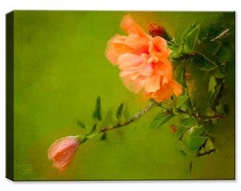 Orange Hibiscus - Fine Art Canvas Print - Indoor Art or Outdoor Art