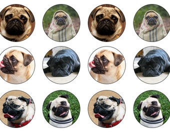 Pugs Cupcake Toppers, Dogs Toppers, Edible Pug Topper, Edible Prints, Pugs Gift, Pug Lover Gift, Wafer Paper, Icing Paper