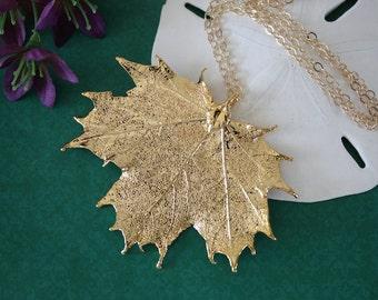 Gold Leaf Necklace, Real Leaf Necklace, Maple Leaf, Gold Maple Leaf, Sugar Maple Leaf, LC62