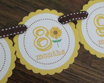 Sunflower Collection: Just Born/0-12 mos Picture Banner. Sunflower First Birthday Banner. Yellow. Harvest. Autumn. Brown.