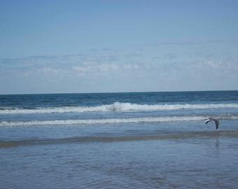 Bald Head Island Beach
