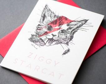 Ziggy Starcat
