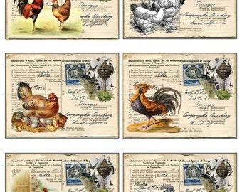 INSTANT DOWNLOAD Vintage Ephemera Roosters Chickens Birdhouses Black White Chicken Printable Chicken Digital Printable Background Ephemera