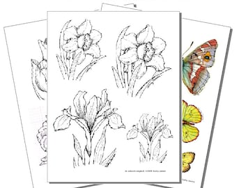 Printed Pyropaper Butterflies and Flowers (Set 1)