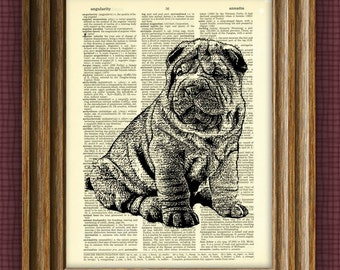 SHAR PEI dog beautifully upcycled vintage dictionary page book art print