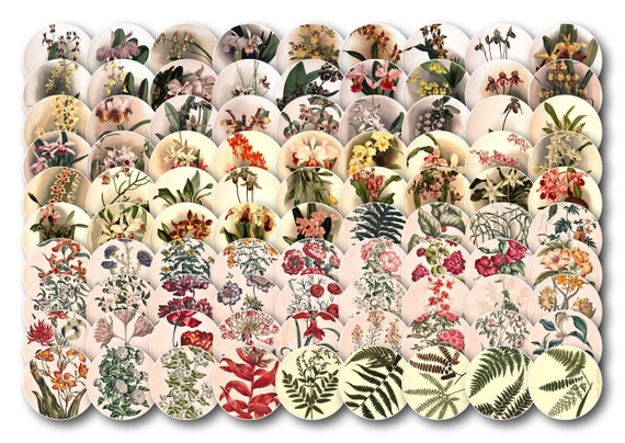 Vintage Flowers: 90 images for cabochons. 90 old patterns of flowers and plants