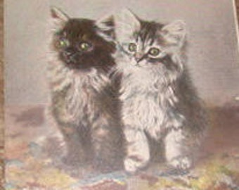 "SALE Vintage Kitten Postcard ""Sooty and Sweet"""