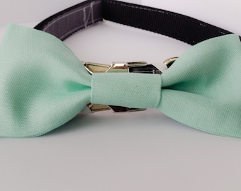 Light Aqua Dog Bow Tie- Small size dog