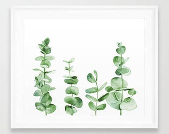 Eucalyptus branches. Watercolor Leaves. Botanical illustration. Eucalyptus Art. Watercolor Print. Kitchen Wall Art. Plant Painting. Greenery