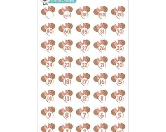 Rose Gold Disney Countdown Stickers - Disney Planner Stickers