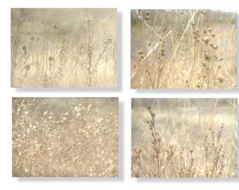 Dreamy Golden Grasses Photo Set  Country French Print Set Sepia Dried Flowers Rustic Wall Art Set of Four Prints Dried Flowers set