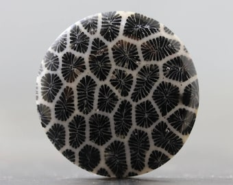 Black Coral Circle Sea Specimen Organic Gemstone Cabochon (V1883)