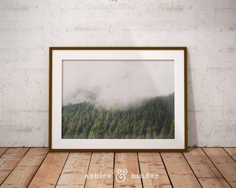 Modern Scandinavian Print, Forest Landscape Photography, Scandi Wall Art Decor, Trees Forest, Nature, Wilderness, Printable Home Decor, Art