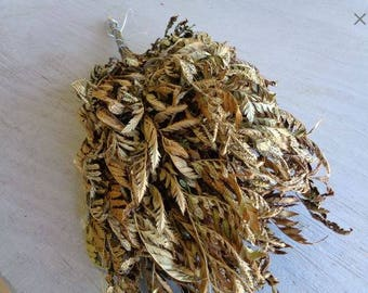 Dried Bakers Fern, Bulk dried, Dried flowers, dried greenery, Wedding flowers, rustic decor, rustic design, Leather leaf, dried fern, fern