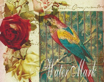 Quilt, Art Fabric Block*Parrot in cage on roses and French script collage*original design*One 5x7*