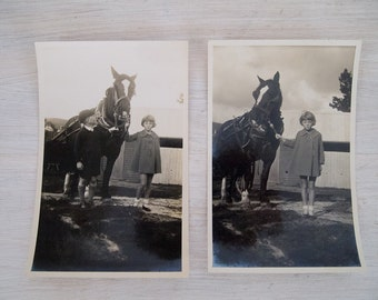 vintage black and white clydesdale and children photos from australia
