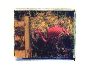 A Visitor to Mary's Garden -  Archival Print of an Original Polaroid Transfer, Signed Limited Edition 8x10 Matted