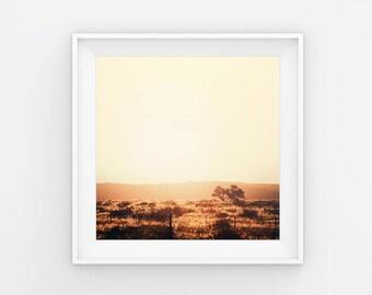 Yellow Sunset Landscape Photography Print