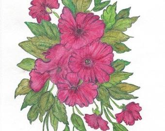 Original Art Drawing in Colored Pencils of Fuschia Petunias